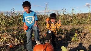 Sauvies Island Pumpkin Patch Corn Maze by 2017 10 08 Sauvie Island Pumpkin Patch Youtube