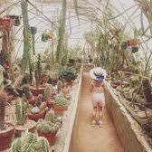 Moorten Botanical Garden 539 s & 117 Reviews Botanical