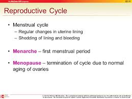Uterus Lining Shedding Period by The Female Reproductive System Ppt Video Online Download