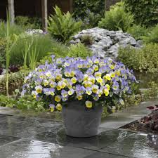 Garden Design Plans Ellen Ecker Ogden