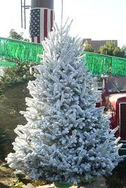 Christmas Tree Flocking Spray Can by Christmas Tree Flocking Christmas Decor