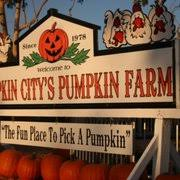 Pumpkin Patch Fresno Ca Hours by Pumpkin City U0027s Pumpkin Farm 91 Photos U0026 61 Reviews Pumpkin