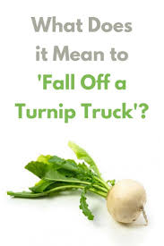 What Does It Mean To 'Fall Off A Turnip Truck'? | Grammar Girl ... 316023 Absurd Res Artistmasem Hat Hayseed Turnip Truck Idw The Turnip Truck Salted And Styled Joyful Public Speaking From Fear To Joy I Didnt Just Fall Off Sarcasm Kitchen Towel Embroidered 10 Bluepath Nashville Youtube Natural Market Competitors Revenue Employees Markstreet Enterprises Sports Under The Wins 2016 Retailer Of Year Olsen Twins Noise