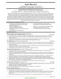 Great Care Cover Letter Complex Telecom Program Manager Resume Project Cv