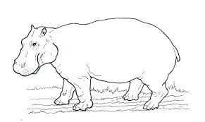 African Animal Coloring Pages Hippo Printable