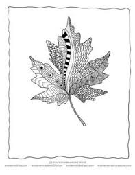 Leaf Coloring Page Book Our Pages Of Leaves A Z From Maple To Tree Sheetsleaf Outlines Black And White