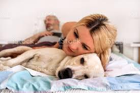 frau mit hunde zu hause hübsche frau ruhen und schlafen mit ihrem hund im bett im schlafzimmer besitzer und hund schlafen haustierkonzept gelber