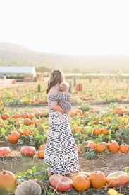 Live Oak Pumpkin Patch 2017 by Pumpkin Patch Visit With Hatched Baby U2022