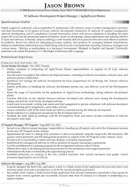 IT Software Development Project Manager Resume Example