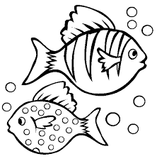 Tropical Fish Rainbow Coloring Page