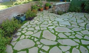 I Want To Do This In The Southwest Side Of My Backyard And The ... Design My Backyard Full Image For Ergonomic Garden With Outdoor Best 25 Kid Friendly Backyard Ideas On Pinterest Beautiful Landscaping Designs Youtube Cheap Solar Lights Im Finally In The Mood To Do A Little Writingso Ill Talk About There Is Little Bird That Cant Fly My What Should Ideas Diy Inspired Unique Garden Dr Blondie Planting Bed Dont Disturb This Groove Was A Hot Mess