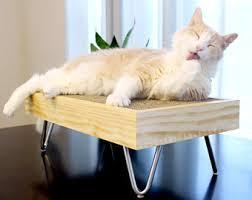 modern cat modern cat etsy
