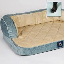 life with beagle serta pet beds your dogs may not want to share