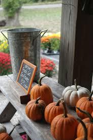 Eastern Iowa Pumpkin Patches by 238 Best Pumpkin Patch Images On Pinterest Pumpkin Patches
