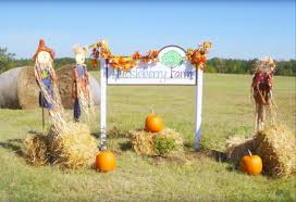 Farmers Shed Lexington Sc by Huckleberry Farms Hodges Greenwood County South Carolina
