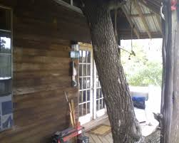 100 Tree House Studio Wood Housestudio Pics 16 Years In The Making One Day And