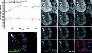 Paraffin Lamp Oil Toxic by β Nagdf 4 Eu 3 Nanocrystal Markers For Melanoma Tumor Imaging