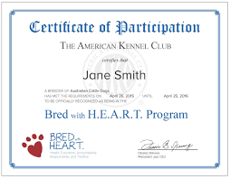 Bred With H.E.A.R.T. Benefits Akc Reunite Home Facebook Npr Shop Promo Code Free Shipping Sheboygan Sun 613 Pages 1 32 Text Version Fliphtml5 Uldaseethatiktk Urlscanio Pet Microchip Scanner Universal Handheld Animal Chip Reader Portable Rfid Supports For Iso 411785 Fdxb And Id64 Chewycom Coupon Codes Door Heat Stopper Giant Bicycles Com Fitness Zone Bred With Heart Faqs Owyheestar Weimaraners News Pizza Hut Big Dinner Box Enterprise 20 Aaa
