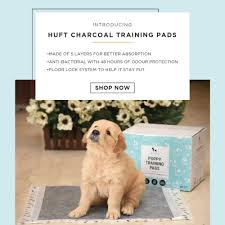 Buy Pet Supplies Online In India | Dog & Cat Products Online – Heads ... Saks 10 Off Coupon Code Active Coupons Roamans Online Codes Bjorn Borg Baby Laz Fly Promo Online Discounts Dinovite For Small Dogs All Natural Flea Repellent Cats 100 Ct Tablets Away Restaurant Savings Coupons Garden Buffet Windsor Powder Up To 15 Lb Supromega 6 Pack 48 Oz Fish Oil Internet Warner Cable Sale Cnn August 2019 Us Diesel Parts Promo Codes Hotdeals