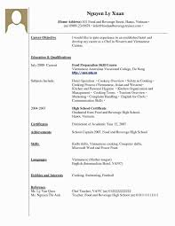 Sample Resume For College Graduate With No Experience Lovely A Student