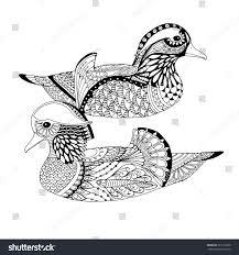 Two Mandarin Ducks Swimming In Water Zentangle Bird Design For Adult Colouring Book