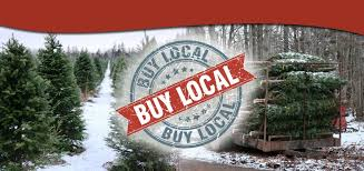 PEI Christmas Tree Farm And Trees Baled For Sale With Buy Local Badge In