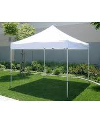 Canopy 10x10 Rental for $35 00