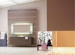Great Bathroom Colors 2015 by Bathroom Designs Brown Walls Interior Design