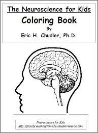 Neuroscience Coloring Book For Kids Homeschooling Science Biology Teach