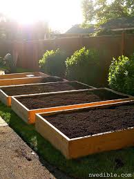 Making Raised Beds For Ve able Garden All You Need To Know To