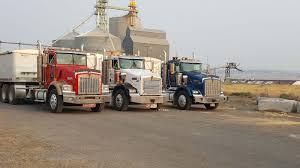 100 Odot Trucking Online Grain Morrow County Grain Growers