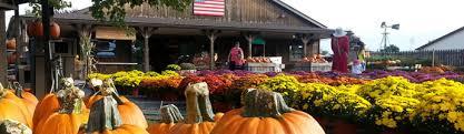 Pumpkin Picking Nj by Harvest Festival Weekends Donaldson Farms