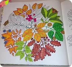 Jardin Secret Carnet De Coloriage Chasse Au Tresor Antistress Johanna Basford Garden ColouringUnique