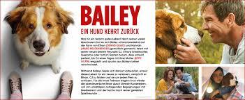 bailey ein hund kehrt zurück de dennis quaid