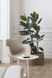100 European Interior Design Magazines Living Room House Raphal Van Gend For T Magazine