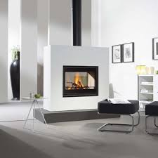 Woodburning Fireplace Contemporary Closed Hearth Doublesided