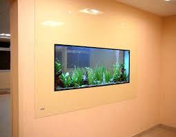 aquarium dans le mur dreamon aquariums suspendus gamme insert