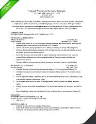 Project Coordinator Resume Summary Good Account Manager Sample Resumes Executive Samples Pdf