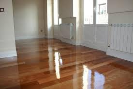 Dog Urine Wood Floors Vinegar by Vinegar Hardwood Floors Titandish Decoration