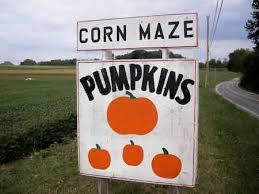 Pumpkin Patch Alabama Clanton by Boyd U0027s Pumpkin Patch Clarksville Tn Fall Time Pinterest