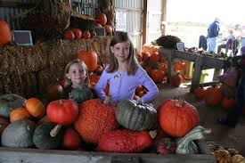 Northeast Iowa Pumpkin Patches by Don U0027t Miss These 10 Great Pumpkin Patches In Iowa This Fall