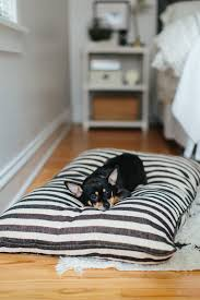 Restoration Hardware Dog Bed by The Everygirl Cofounders U0027 Chicago Home And Office Tour The Everygirl