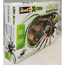 Revell 02097 Tarantula Spider Model Kit - Revell From KH Norton UK Papo Tarantula 50190 Free Shipping Tarantulas For Sale Pretoria North Public Ads Spiders Insects Most Dangerous In California Owlcation Does Anyone Else Like Cars Forum Landyachtz Longboards Bear Grizzly 852 Trucks Youtube Defense Studies Production Of 6x6 Has Been Completed This 1939 Chevy Dirttrack Racer Was Reborn As A Street Car Hot 2018 Silverado 2500 3500 Heavy Duty Chevrolet Kiss My Big Hairy Spider July 2015 0tarantulahotrodpowertour2017jpg Rod Network