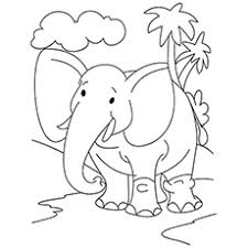 Majestic Elephant Picture Free Printable Coloring