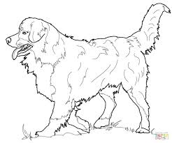Coloring Pages Free Printable Cute Dog Online Click Mountain Pdf Doggy