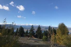 100 Naramata Houses For Sale 110 Slate Place Null BC Home For Sales