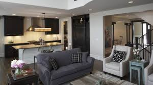 Houzz Living Rooms Traditional by Unique Dark Gray Couch Living Room Ideas Cozynest Home