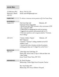 Jet Setter Job Application Standard Resume Format 10 Writing Small Mistakes You May Not Realize
