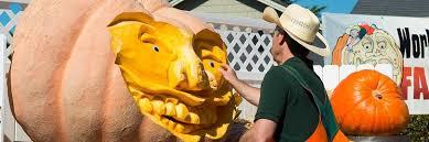 Pumpkin Fest Half Moon Bay by Weekend Go Tos For October 16 2015 Kalw