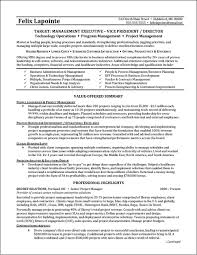 Program Manager Resume Example | Distinctive Documents Useful Entry Level Resume Samples 2019 Example Accounting Part Time Job Cover Letter Samples College Student Sample Writing Tips Genius Customer Service Template 2017 Of Stylish Rumes Creative Idea Executive Professional Janitor Best
